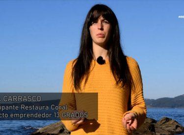 Documental #RESTAURA CORAL Los fondo marinos del Atlántico. Cnidarios en Galicia